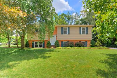 Single Family Home For Sale: 250 Windmill Ridge Road