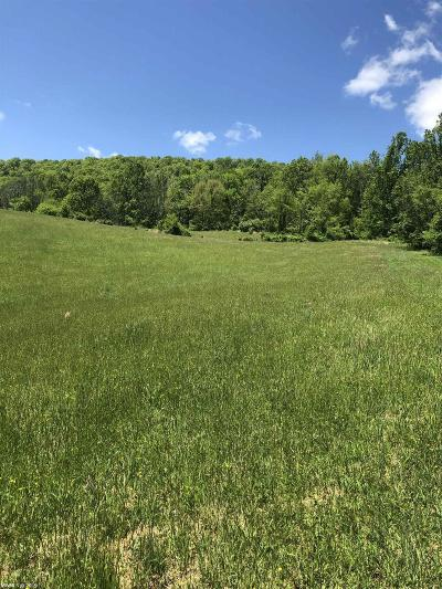 Pulaski County Residential Lots & Land For Sale: Lot 31 Big Valley Drive