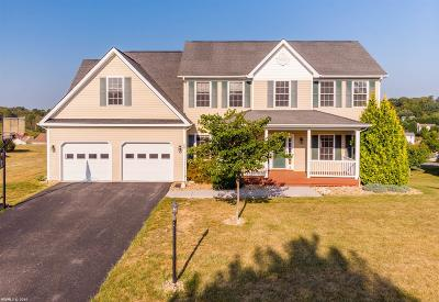 Christiansburg Single Family Home For Sale: 255 Citrine Court