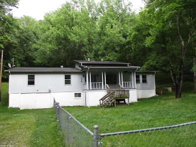 Pulaski Single Family Home For Sale: 316 Birch Street
