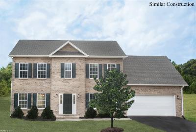 Christiansburg Single Family Home For Sale: 1610 Diana Drive