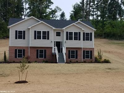 Montgomery County Single Family Home For Sale: 1725 Blake Drive