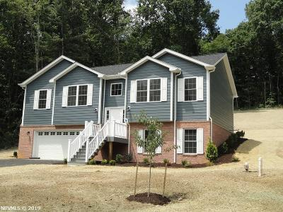 Christiansburg Single Family Home For Sale: 1670 Blake Drive
