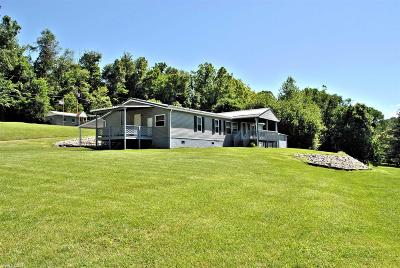 Giles County Single Family Home For Sale: 133 Piney Mountain Road