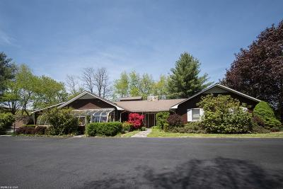 Blacksburg Single Family Home For Sale: 2124 Mt. Tabor Road
