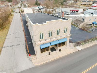 Christiansburg Commercial For Sale: 990 Cambria Street
