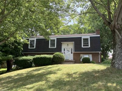 Christiansburg Single Family Home For Sale: 210 Rolling Hills Drive