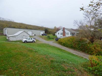 Wythe County Single Family Home For Sale: 3609 Chapman Road