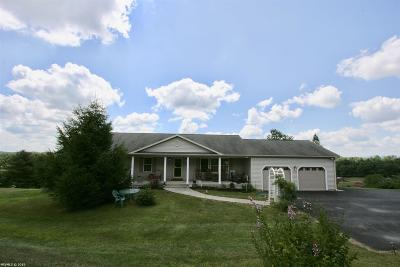 Floyd County Single Family Home For Sale: 3585 Christiansburg Pike Road