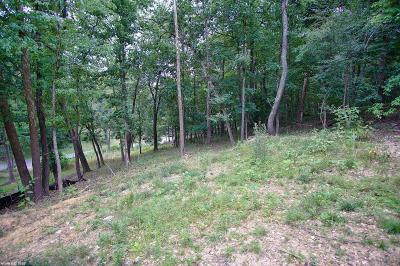 Residential Lots & Land For Sale: 9 Pine View Drive