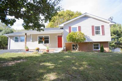 Christiansburg Single Family Home For Sale: 205 Mulberry Drive