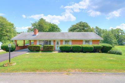 Pulaski Single Family Home For Sale: 1512 Overton Drive
