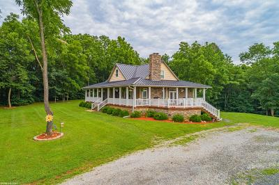 Wythe County Single Family Home For Sale: 546 Riverview Road