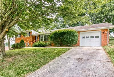 Pearisburg Single Family Home For Sale: 110 Forest Hill Drive