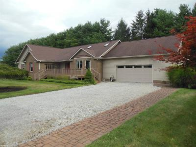 Blacksburg Single Family Home For Sale: 1560 Thomas Lane