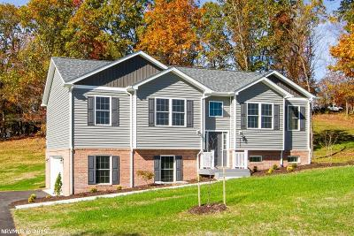 Radford Single Family Home For Sale: 4515 Old Stage Road