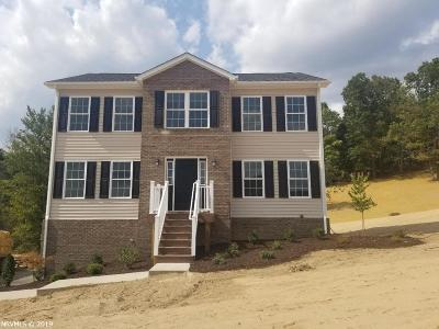 Radford Single Family Home For Sale: 4509 Old Stage Road