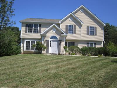 Christiansburg Single Family Home For Sale: 720 Independence Boulevard