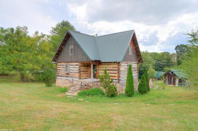 Blacksburg Single Family Home For Sale: 2205 Keisters Branch Road