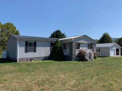 Giles County Single Family Home For Sale: 245 Porter Street