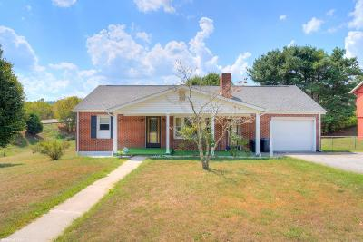 Giles County Single Family Home For Sale: 103 Laurel Street