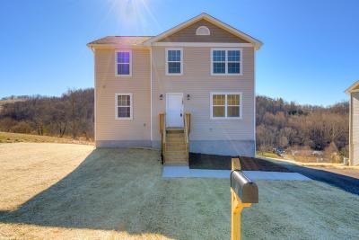 Giles County Single Family Home For Sale: 124 Prairie View Lane