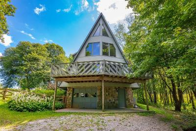 Wythe County Single Family Home For Sale: 238 Fabric Lane