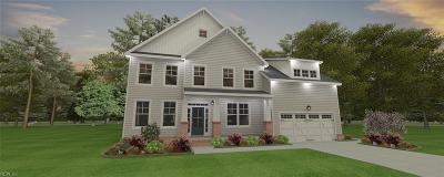 Chesapeake Single Family Home Under Contract: 206 Creston Ct