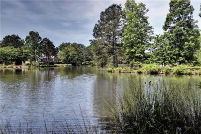 Williamsburg Single Family Home For Sale: 3256 Wingfield Lake Rd