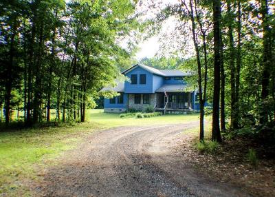 Suffolk Single Family Home For Sale: 10320 Ellis Rd