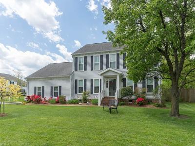 Virginia Beach VA Single Family Home New Listing: $365,000