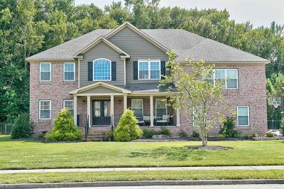 Chesapeake Single Family Home For Sale: 313 Scone Castle Loop