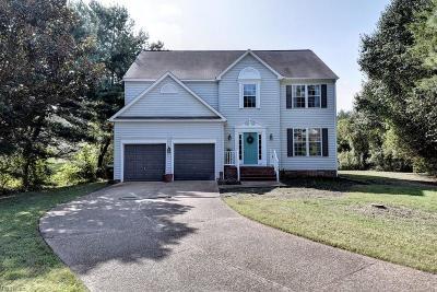 Williamsburg Single Family Home For Sale: 4728 Deliverance Dr