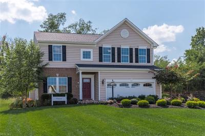 Newport News Single Family Home New Listing: 123 Willet Way