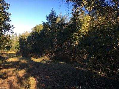 Suffolk Residential Lots & Land For Sale: 3.5ac Sleepy Hole Rd