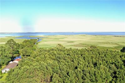 Pungo Land/Farm For Sale: 4406 Muddy Creek Rd