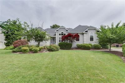 Virginia Beach Residential New Listing: 2344 Upper Greens Pl