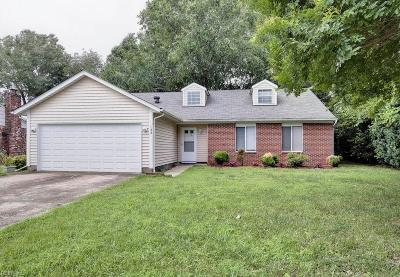 Newport News Residential New Listing: 132 Cremona Dr