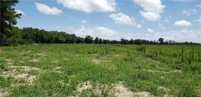Pungo Land/Farm For Sale: Lot 2 Gum Bridge Rd