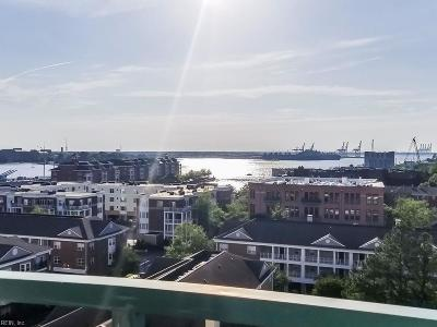 Norfolk Residential New Listing: 123 College Pl #806