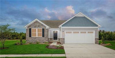 Williamsburg Residential New Listing: 603 Arbordale Loop