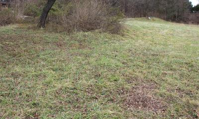 Residential Lots & Land For Sale: 323 Madine Way