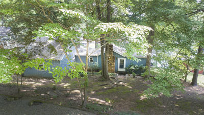 Bedford County, Franklin County, Pittsylvania County Single Family Home For Sale: 5420 Smith Mountain Rd