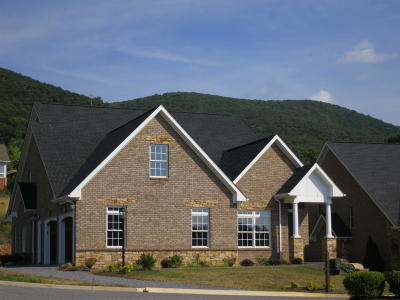 Roanoke County Single Family Home For Sale: 224 Stonecreek Way