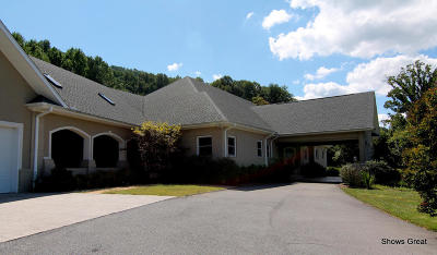 Roanoke VA Single Family Home For Sale: $575,000