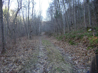 Troutville Residential Lots & Land For Sale: Hogan Hollow Rd