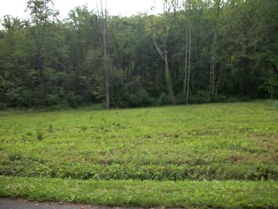 Residential Lots & Land For Sale: Sycamore Dr