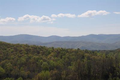 Botetourt County Residential Lots & Land For Sale: 2775 Buffalo Rd