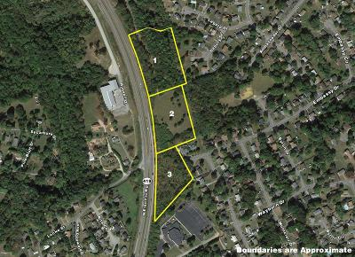 Residential Lots & Land For Sale: N Electric Rd