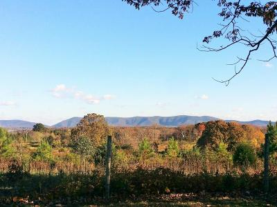 Bedford County Residential Lots & Land For Sale: 5226 Scruggs Rd